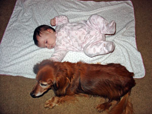 Myra the canine measuring stick with baby Lydia